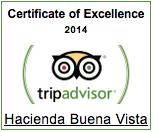 Hacienda Buena Vista Tripadvisor