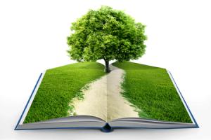 Educacion-ambiental-inversa