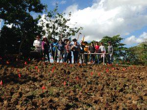 Group de Voluntario Huerto