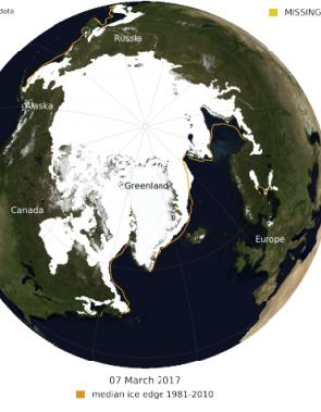 hielo marino en el Artico