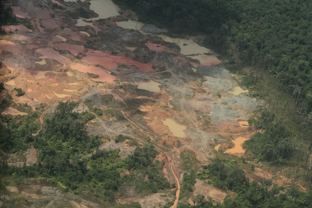 deforestacion Choco Colombia
