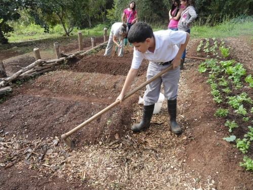 huertos comunitarios Puerto Rico