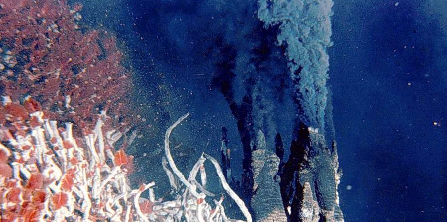 aguas termales fondo del mar