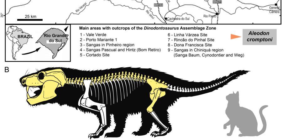 reptil mamiferoide no africano