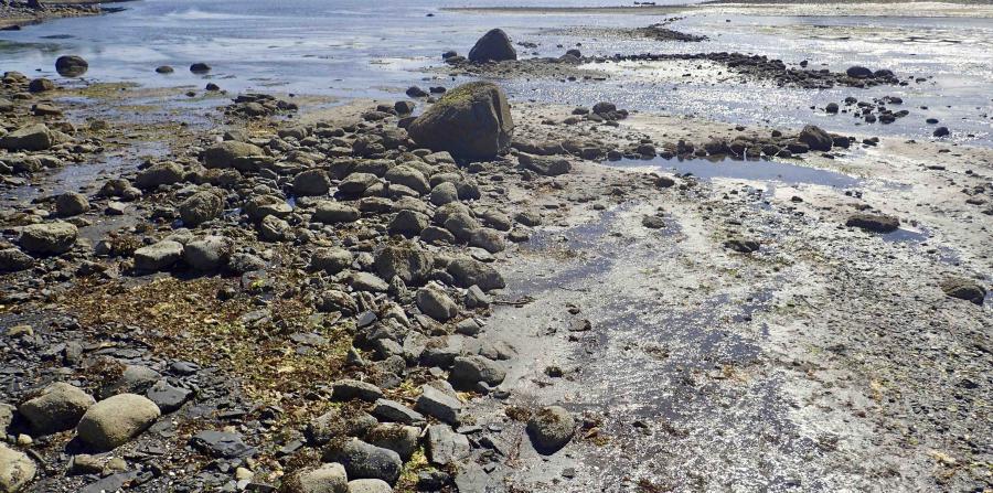 trampa para peces prehistórica alaska