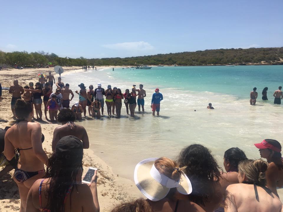 nido de tortugas en Playa Sucia