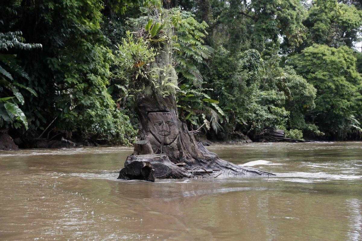 TORTUGUERO, UN EJEMPLO DE CONSERVACIÓN Y DESARROLLO EN COSTA RICA