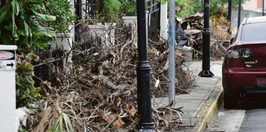 escombros material vegetativo