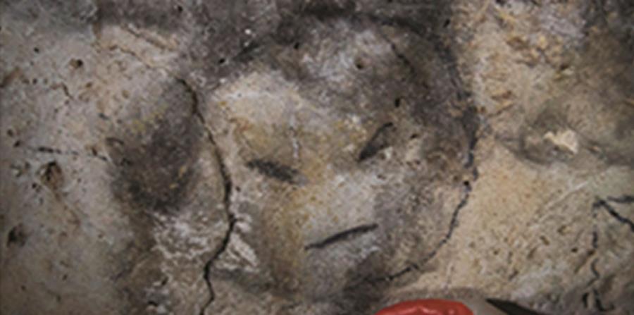 obra en cuevas de la isla de Mona