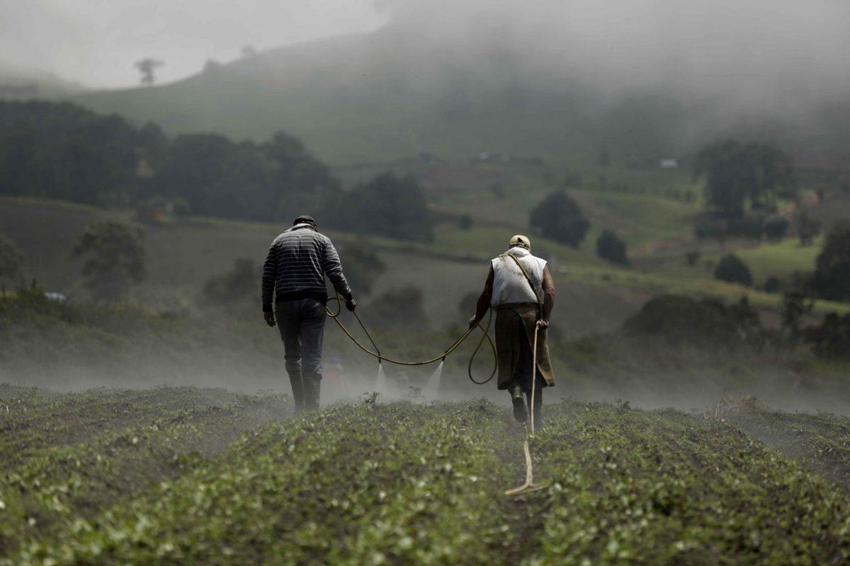 EL FUTURO DE LA AGRICULTURA PASA POR EL TRATO DIGNO Y PROTECCIÓN DEL AMBIENTE