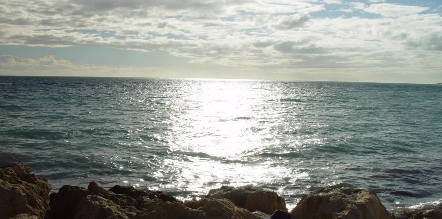 rapida degradacion de los mares