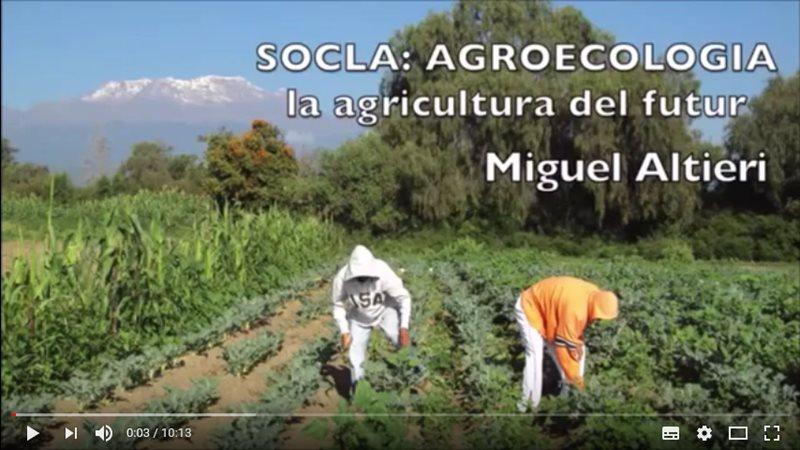 agroecologia-La-agricultura-del-futuro