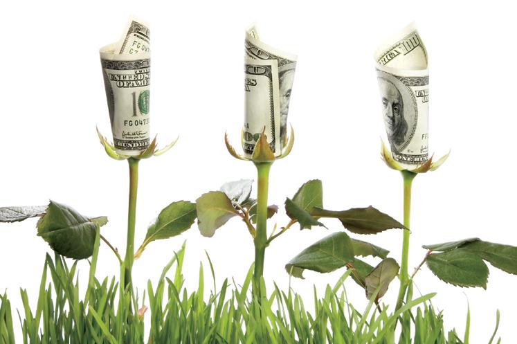 financiarizacion de la naturaleza economia verde