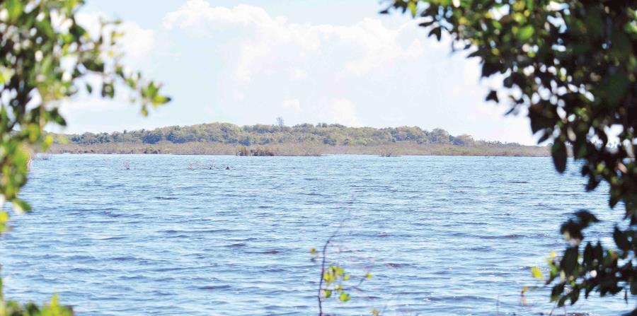 Reserva Cano Tiburones
