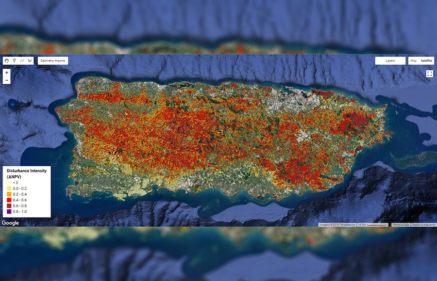 Para La Naturaleza Millions Of Trees In Puerto Rico Damaged