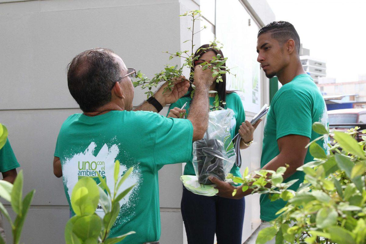 gira-de-reforestacion-Crece-Verde-de-FirstBank