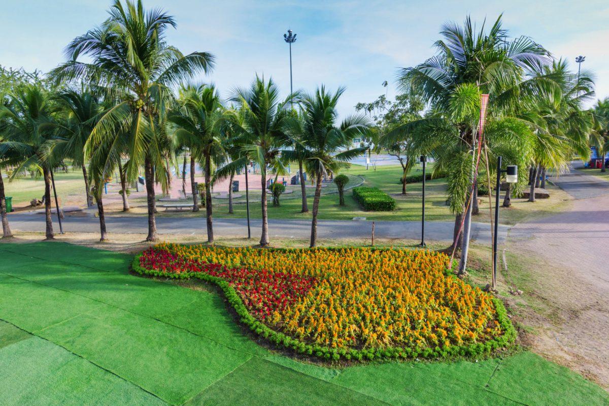 Para la naturaleza lenta recuperaci n en mercado de for Plantas ornamentales para parques
