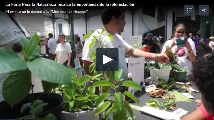 feria Para la Naturaleza programa de reforestacion