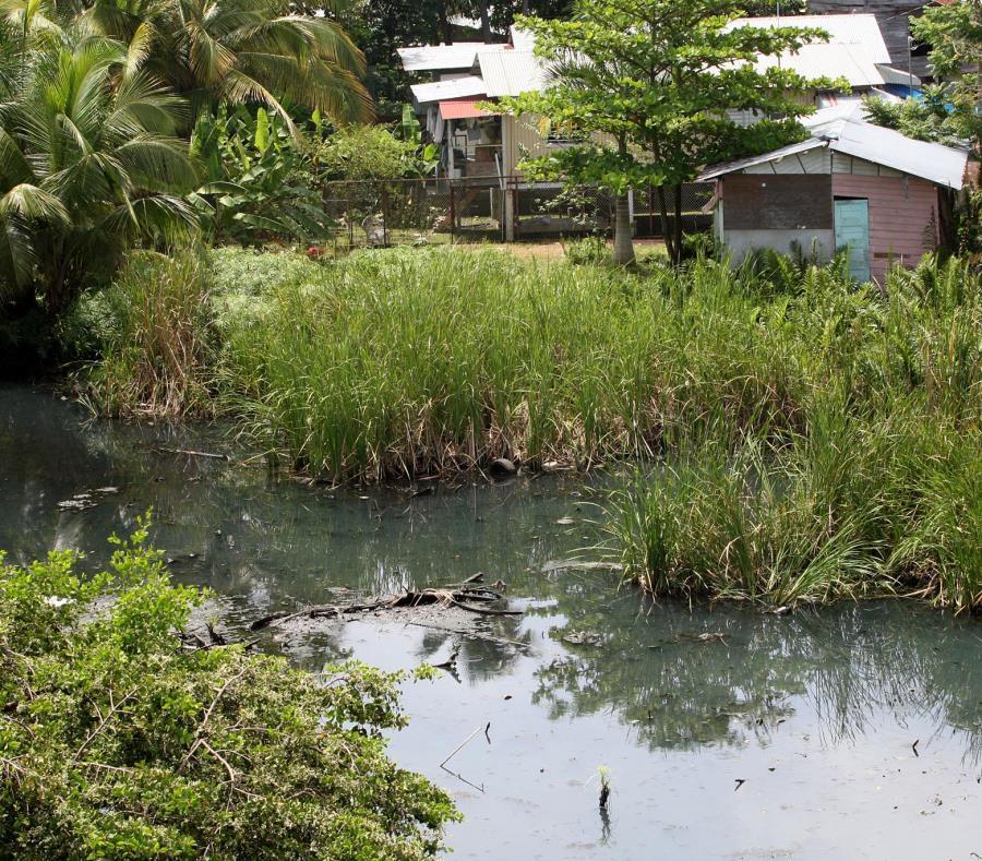 proyecto dragado cano Martin Pena San Juan