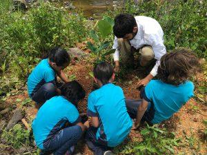 Escuela-Elemental-Inocencio-Cintron-Zayas-en-Barranquitas-sembrar-reforestar