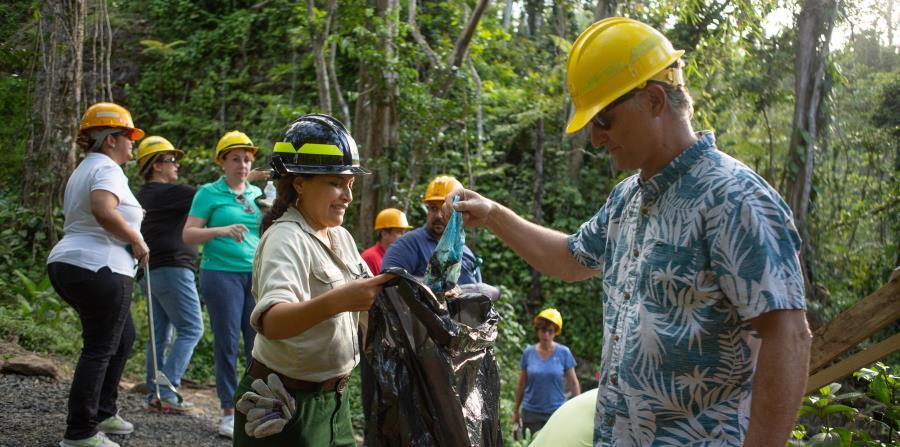 limpieza bosque El Yunque