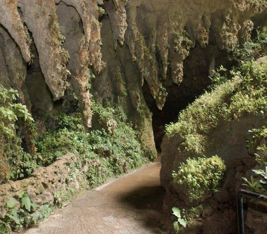 Río Camuy