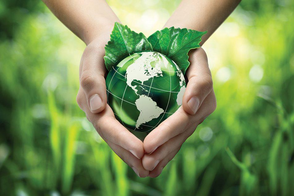 planeta-verde-donativos-ambientales