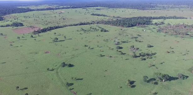 Amazonía de Brasil y Bolivia