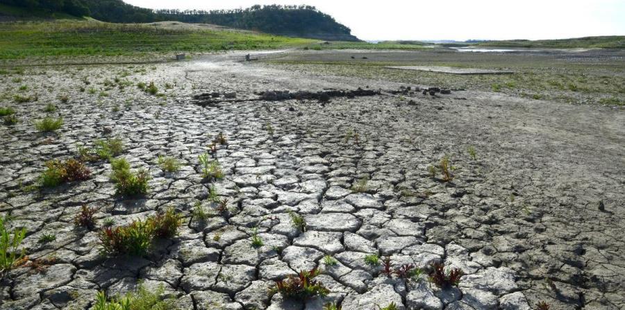 sequía escasez de agua