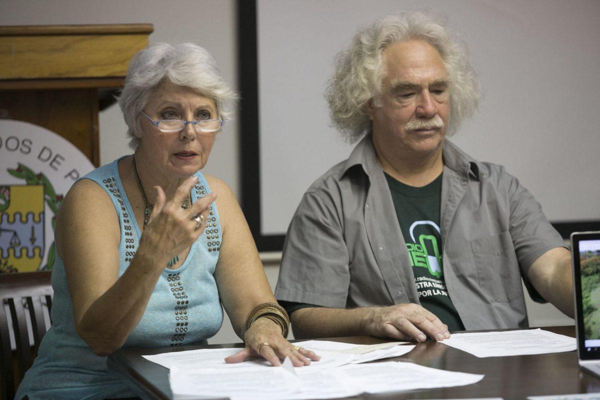 grupo que promueve la búsqueda de fondos para hacer el Fuerte de Conde Mirasol