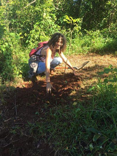Para La Naturaleza planta árboles