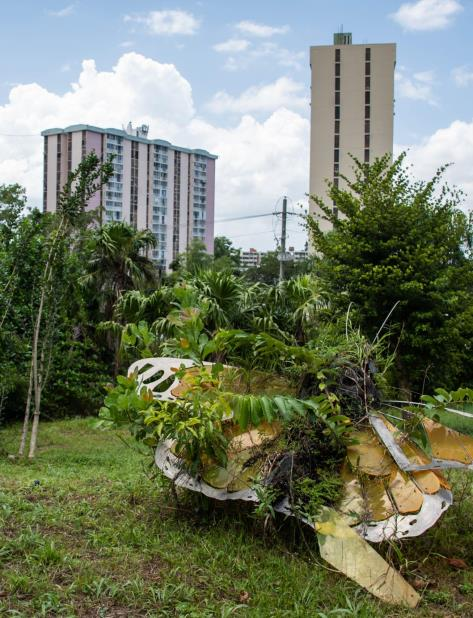 Red de Bosques Urbanos