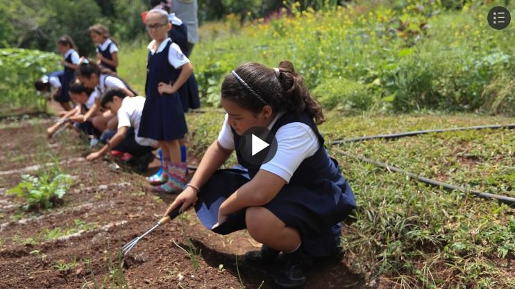 agroecología a niños en Orocovis