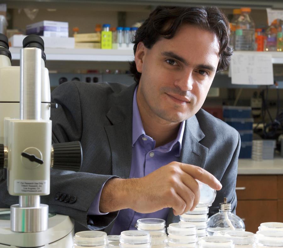 doctor Daniel Colón Ramos