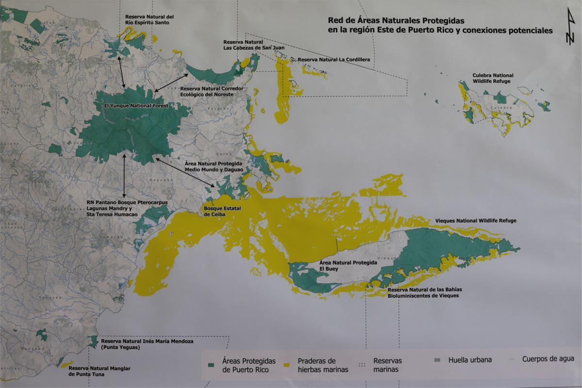diseno de vereda para interconectar El Yunque