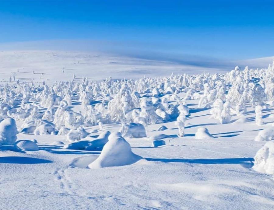 sitios arqueologicos del Artico
