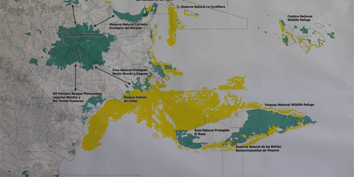 vereda para interconectar El Yunque