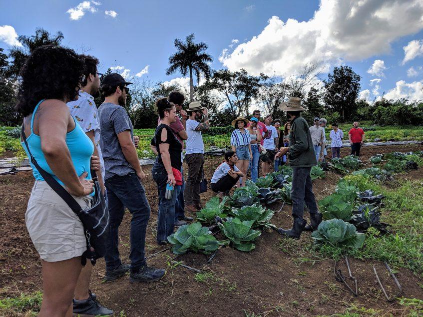 agroecologia Puerto Rico