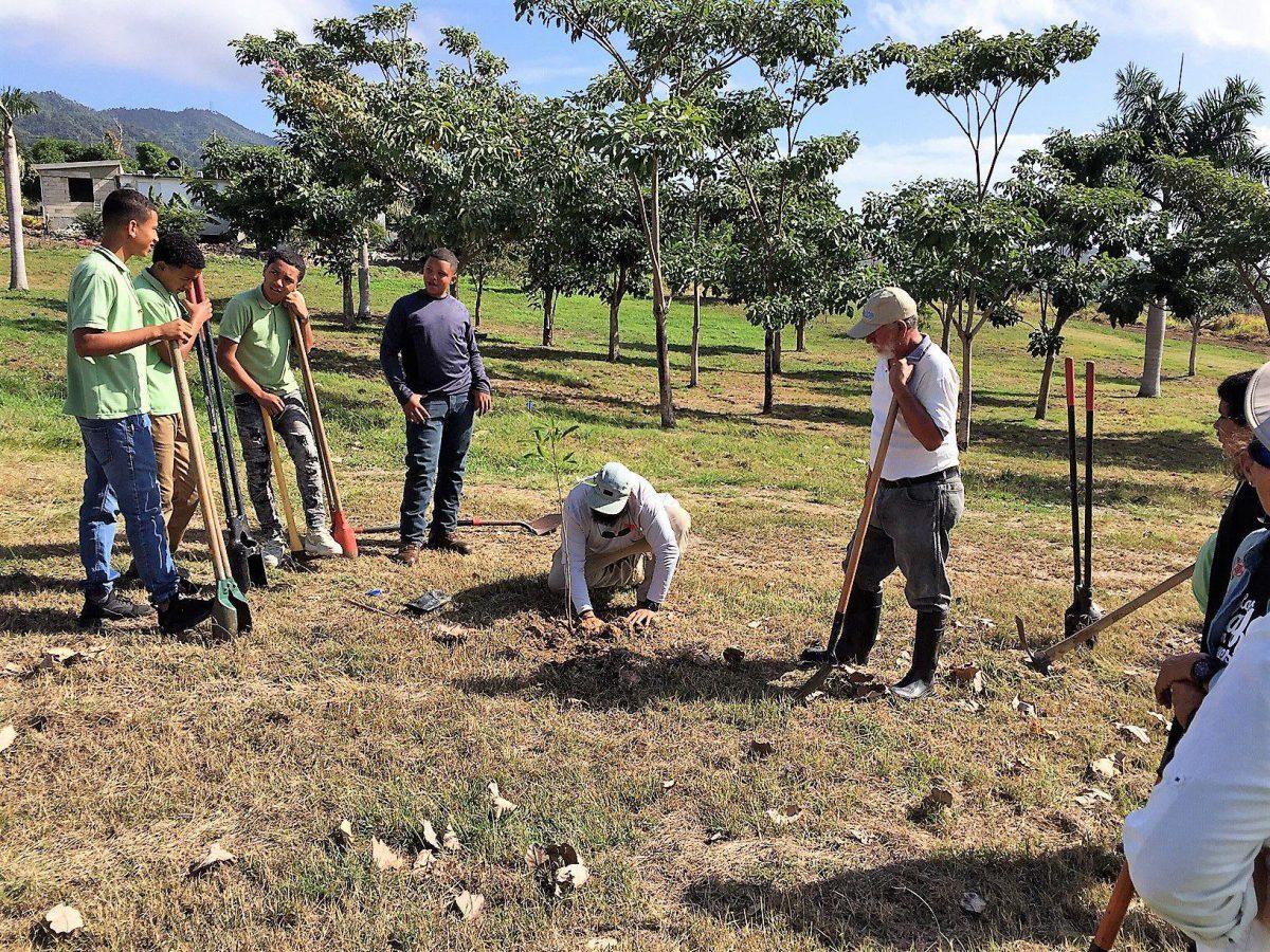 siembra de arboles en reserva natural de Maunabo