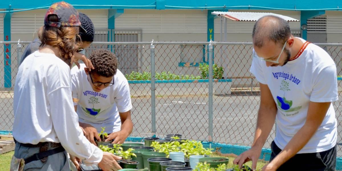 Proyecto Agroecológico Urbano de la Escuela Intermedia Berwind