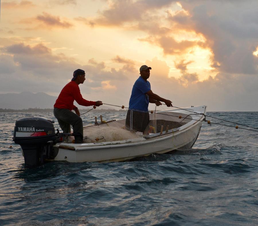 pesquerias