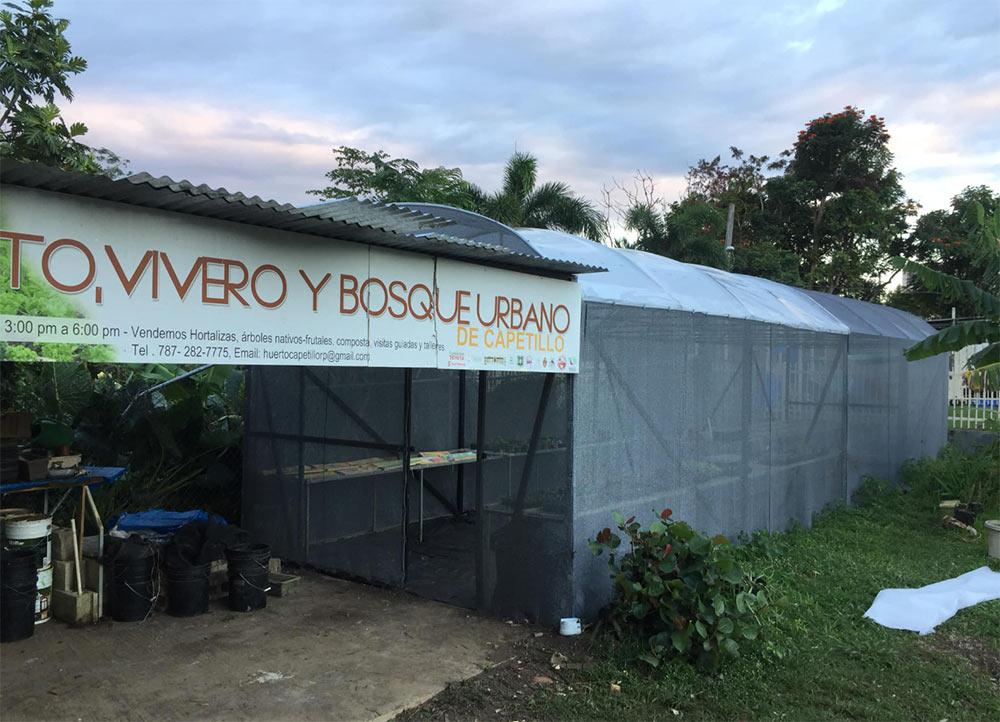 Barrio Capetillo Vivero Comunitario
