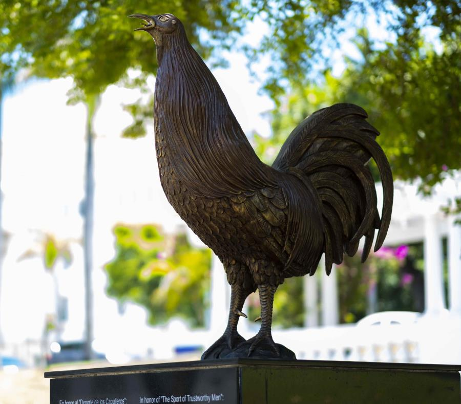 estatua de un gallo Puerto Rico
