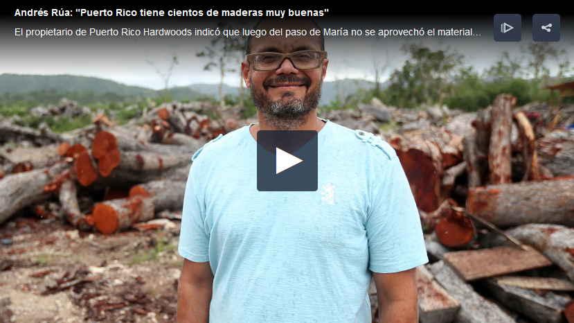 maderas nobles con potencial industrial