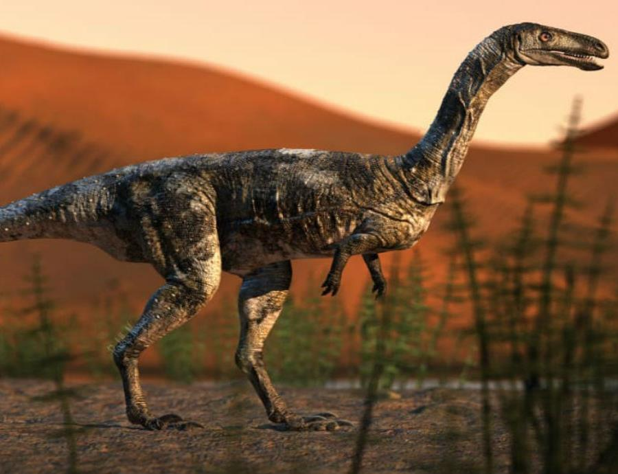 nueva especie de dinosaurio carnivoro en Brasil