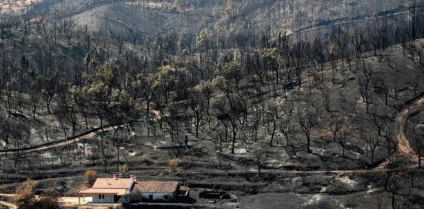 incendio centro de Portugal