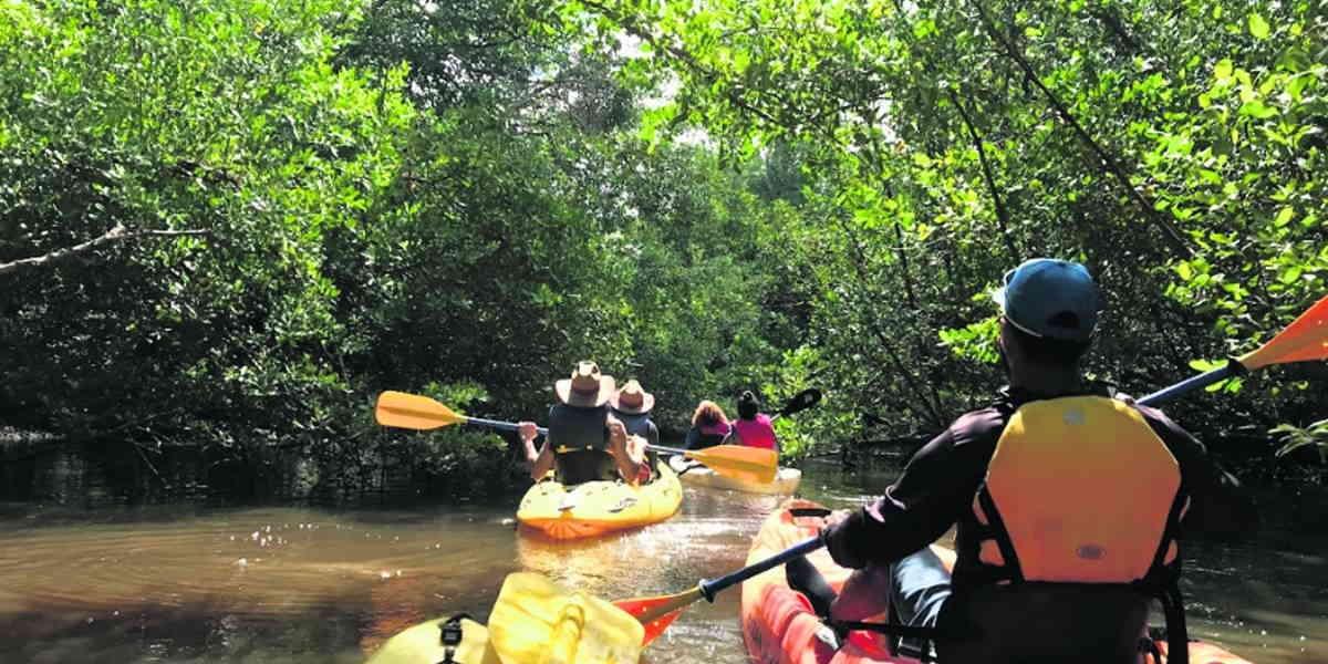 autosostenibilidad de las comunidades kayak