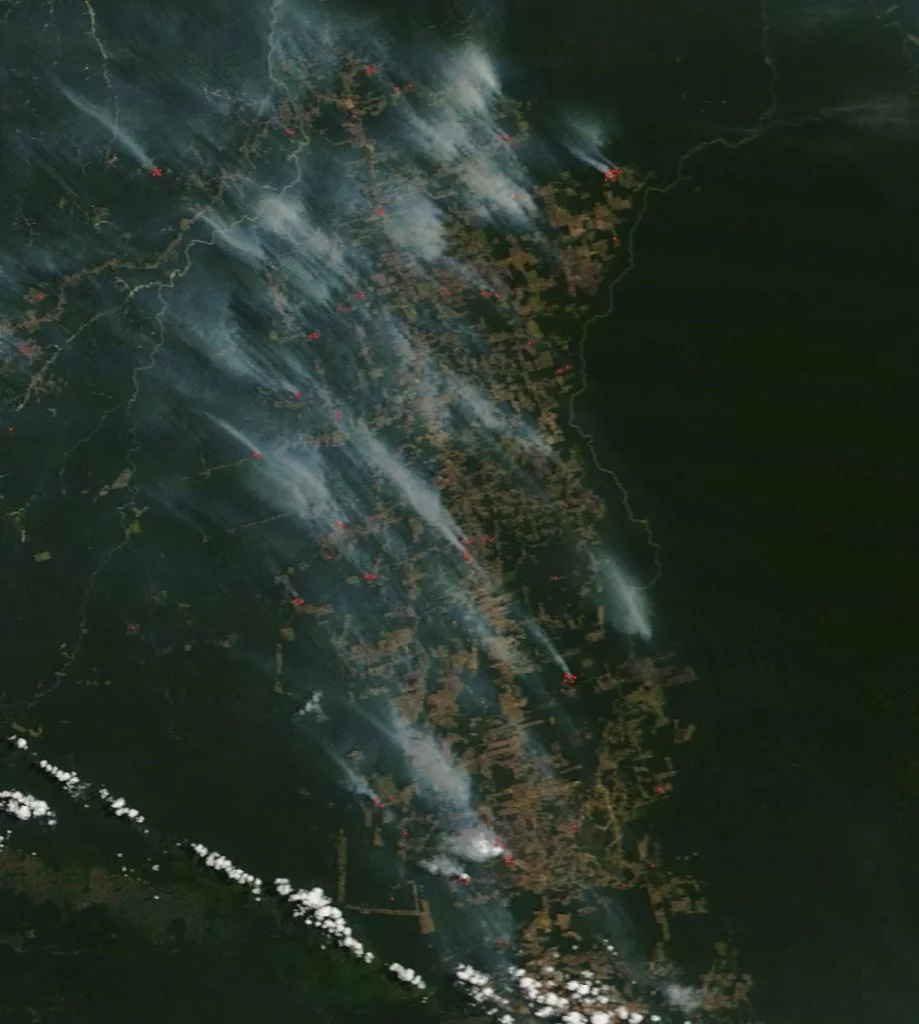 imagen satelital incendios Amazonia