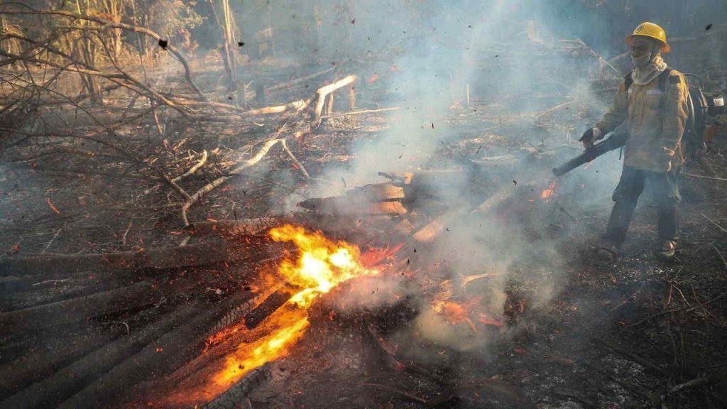 Bombero Incendio Amazonas