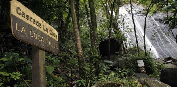 Cierre De El Yunque